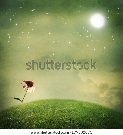 One echinacea flower on a fantasy hilltop under the moon - stock photo