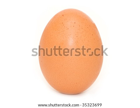 One egg isolated on white