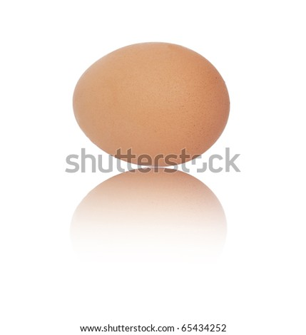 One egg on white background