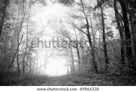 One figure in the dark,foggy forest - stock photo