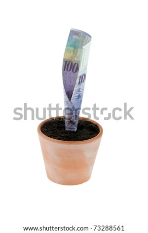 One franc note in flower pot. Symbol rates, growth. - stock photo