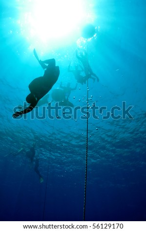 One freediver started his dive down to the depth, while others are waiting for him on the surface