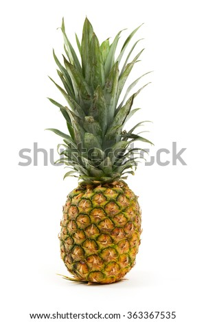 one fresh Pineapple fruit isolated on white backgroung - stock photo