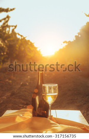One glass and bottle of the white wine in autumn vineyard. on wooden table Harvest time, sundown on vineyard in autumn - stock photo