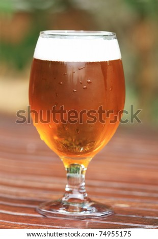 One glass of the light beer on the wooden table in the garden - stock photo