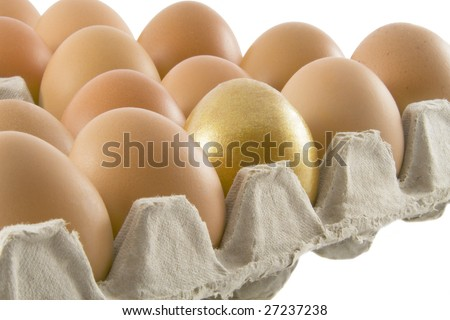 One golden and many ordinary fresh rural eggs packed into cardboard container isolated over white background - stock photo