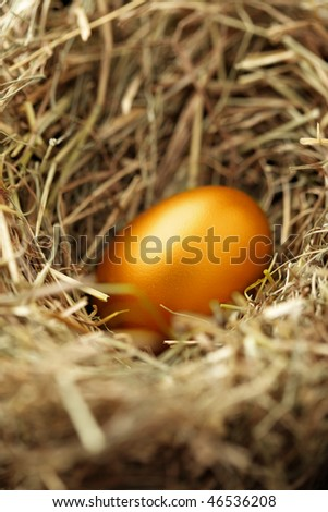 One golden chicken egg in nest close-up - stock photo