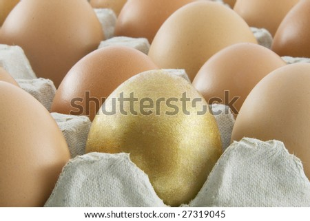 One golden egg with many ordinary fresh rural eggs packed into cardboard container - stock photo