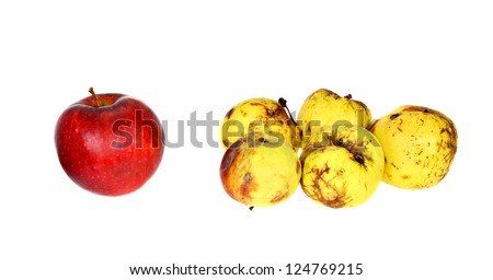 One good ripe red apple beside the group of ugly small rotten apples isolated on white background - stock photo