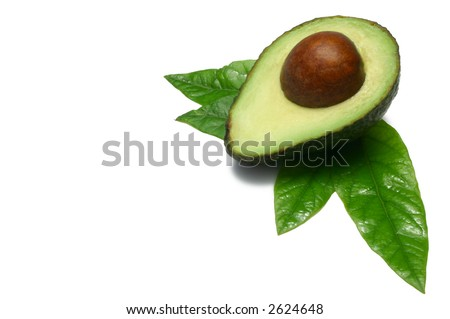 One half Hass Avocado with young leaves from an  Avocado tree, isolated on white - stock photo