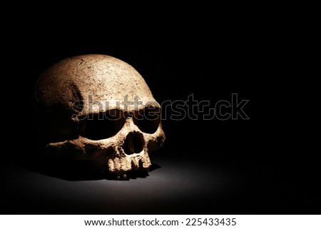 One human skull on dark background under beam of light - stock photo
