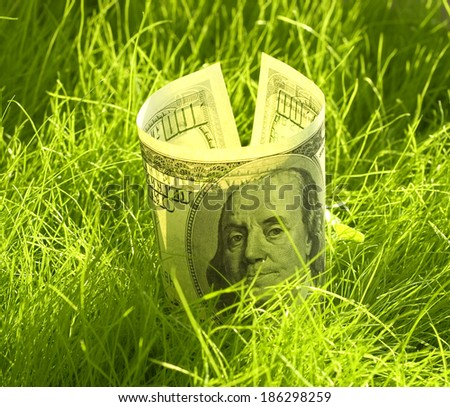 one hundred dollars growing in the grass - stock photo