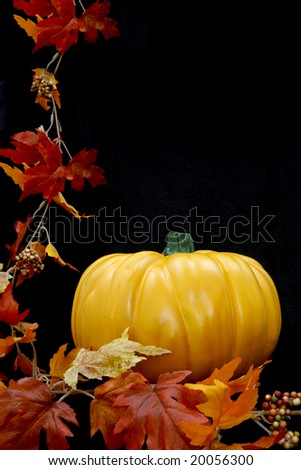 One lone pumpkin with some autumn leaves against a black background.