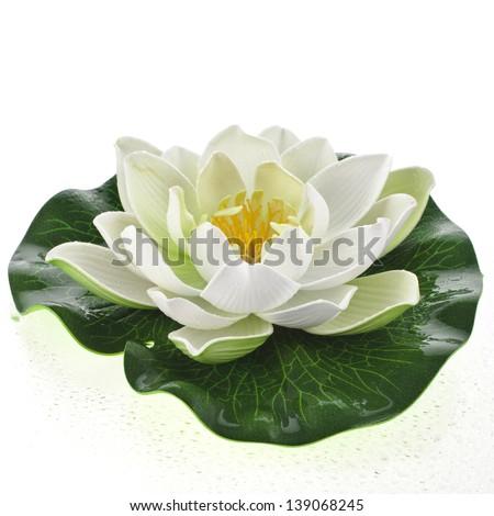 One Lotus flower isolated on white - stock photo