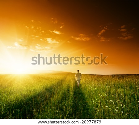 one man and field of summer grass and sunset - stock photo
