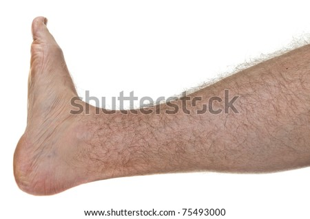 One mans hairy leg isolated on white background - stock photo