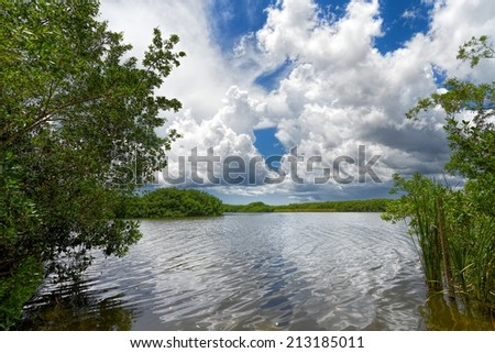 One of the many lakes in the Florida Everglades with beautiful cloud formations in the Florida Everglades Landscape during the wet season summer months - stock photo
