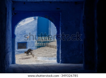 One of the streets in Chefchaouen in Morocco. All the houses and walls are painted blue. Popular tourist destination in Morocco. - stock photo