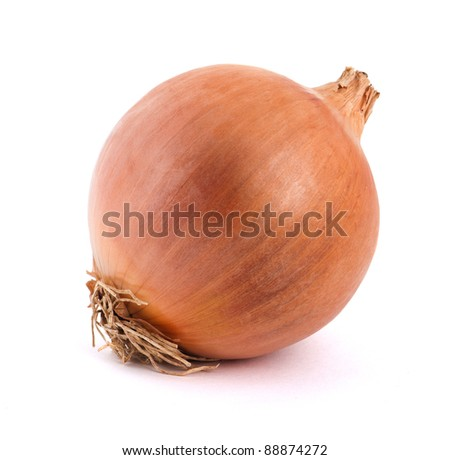 One onion on a white background