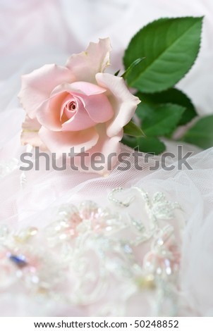 One pink rose on wedding lace (shallow depth of field, copy space) - stock photo