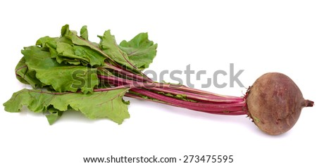 one red beetroot with leaf on white background   - stock photo