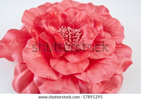One red flower isolated on white background - stock photo