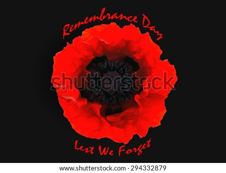 "One red poppy isolated with text "" Remembrance day"" - stock photo"