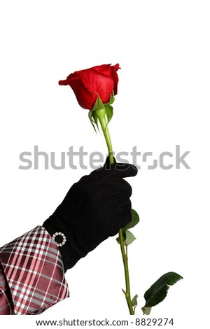One red rose in girl's hand - stock photo
