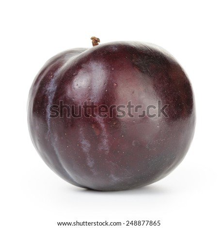one ripe black plums isolated - stock photo