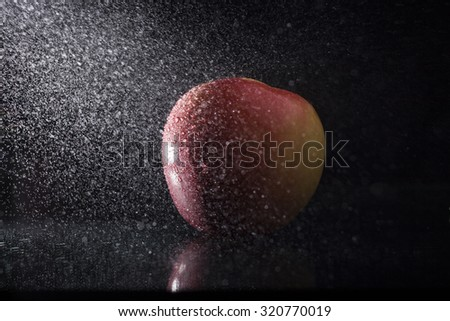 One ripe tasty beautiful seasoning berry fruit of red yellow wet apple with water spray lying in studio on black background, horizontal picture - stock photo