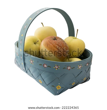 One rotten apple among fresh apples in a hand-painted blue basket. - stock photo