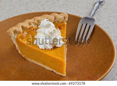 one slice of homemade pumpkin pie with whipped cream - stock photo