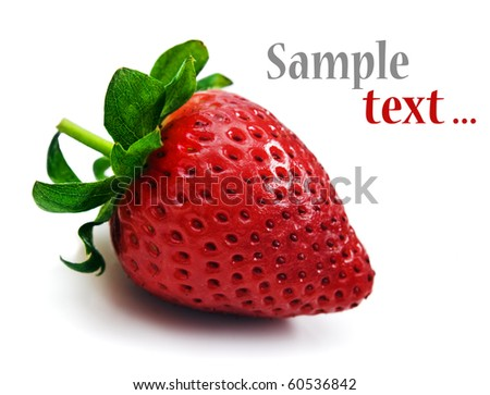One strawberry on a white background with space for text - stock photo