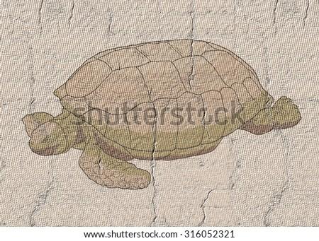 One turtle - stock photo