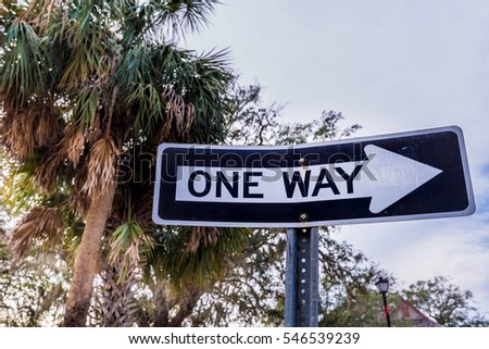 One Way sign with Palm Trees