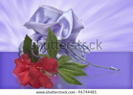 one  weeding Favors  on the white background - stock photo