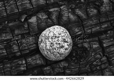 One white speckled granite stone contrasts against the dark black burn pattern of a log charred by fire. - stock photo
