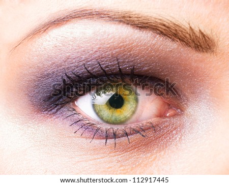 One women's  eye closeup with make up - stock photo
