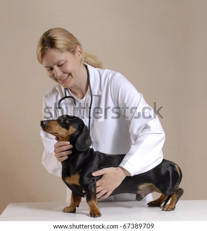 One young veterinarian woman holding a black dog. - stock photo