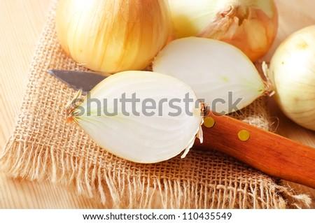 Onion - stock photo