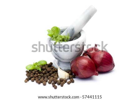 onion, herbs and spices - stock photo