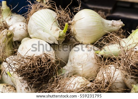 onions on a market