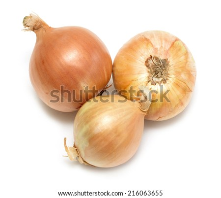 onions on a white background - stock photo