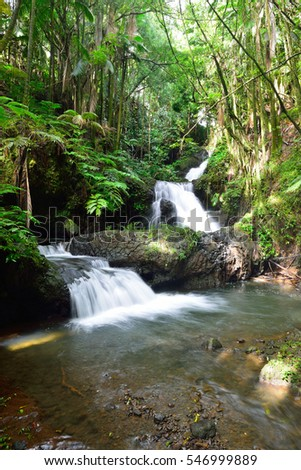 Onomea Falls located in Hawaii Tropical Botanical Garden on the island of Oahu, Hawaii