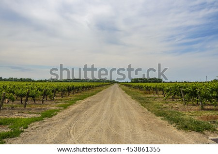 ONTARIO - CANADA, JUNE 16 2016: Reif Estate Winery is located in Niagara on the Lake in Ontario, Canada. It is primarily known for playing an important in role pioneering the Ontario wine Industry.