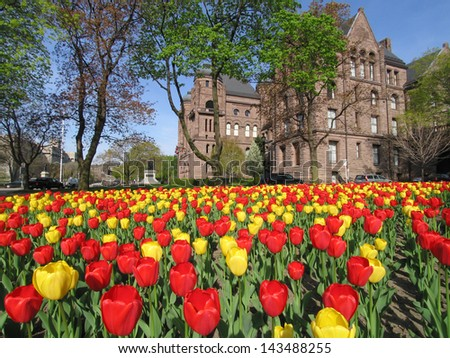 Ontario Parliament Building with tulip patch - stock photo