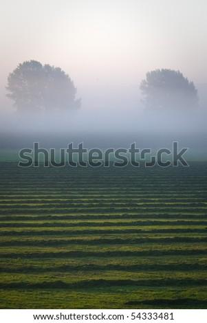 Ooij - Netherlands - stock photo