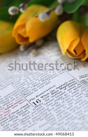 Open Bible with selective focus on the text in Mark 16 about Jesus' resurrection. Shallow DOF - stock photo