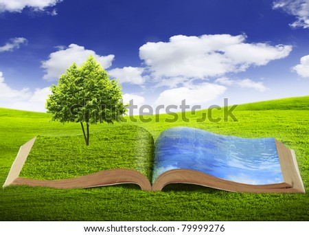 open book - stock photo