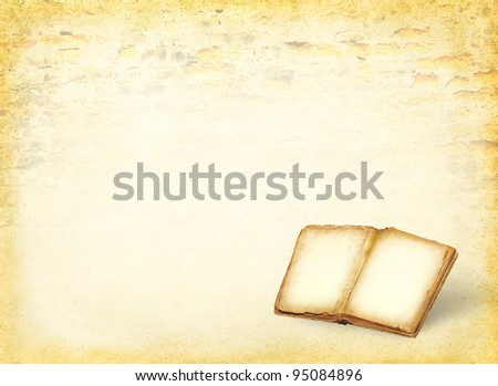 Open book and empty pages. Ancient blank pages of the history book on the grunge background. Antique book with empty paper background. - stock photo